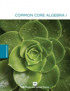 algebra-1-workbook-cover